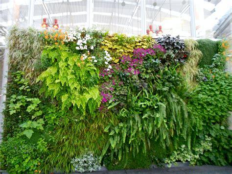 Wall Garden Design, 4 Techniques to Create A Wall Garden