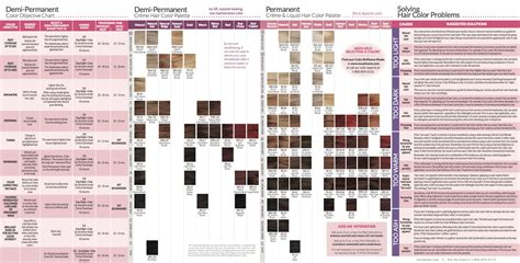 ion brilliance hair color chart pin by on look pinterest of ion hair dye color chart