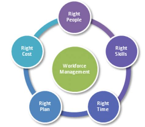 Workforce Management Analyst by Workforce Management Analyst Related Keywords Suggestions Workforce Management Analyst