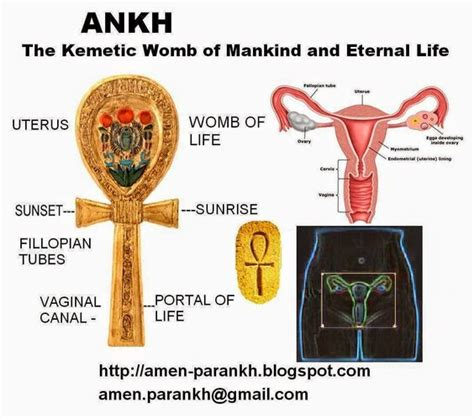 ancient biography definition meaning of the ankh african consciousness