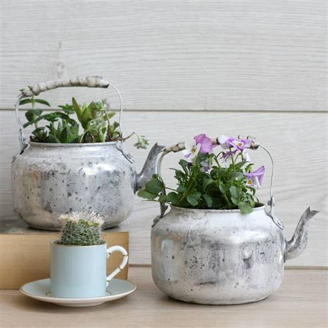 aged metal teapot planter by magpie living