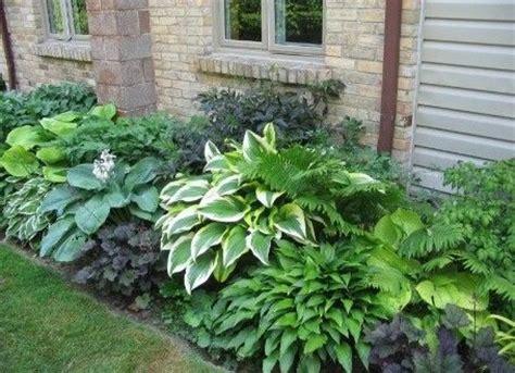 Blumen Für Den Garten 1033 by 220 Ber 1 000 Ideen Zu Innenhof Auf Garten