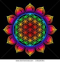 Lotus Flower Sacred Geometry Sacred Geometry Stock Photos Images Pictures