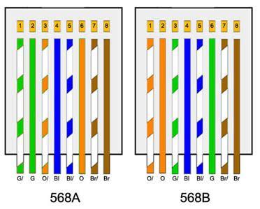 Modular Cat6 Warna Biru conector pulg rj45 cat 5e y cat 6 satra
