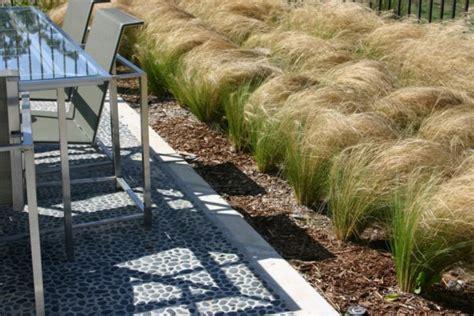pflanzen für trockene sonnige standorte die besten pflanzen f 252 r sonnigen standort im garten