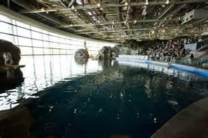 shedd aquariumupchicago