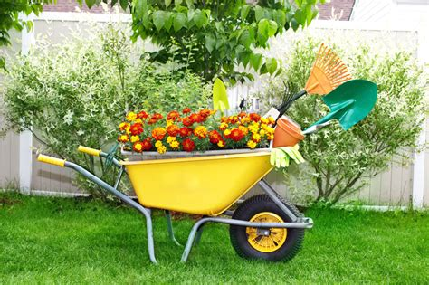25 wheelbarrow planter ideas for your garden garden