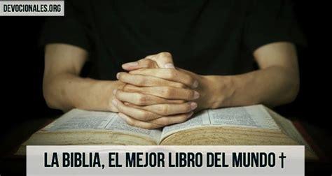 libro la mejor sopa del la biblia el mejor libro del mundo amor para leer