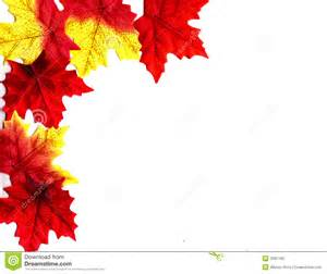 autumn leaves design stock photography image 3281192