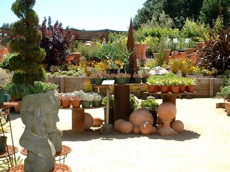 cottage garden nursery petaluma today in the garden nursery tour part 1