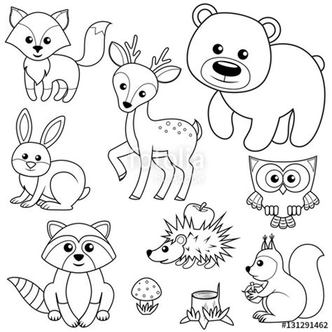 woodland animals an colouring book for dreaming and relaxing books quot forest animals fox raccon hare deer owl