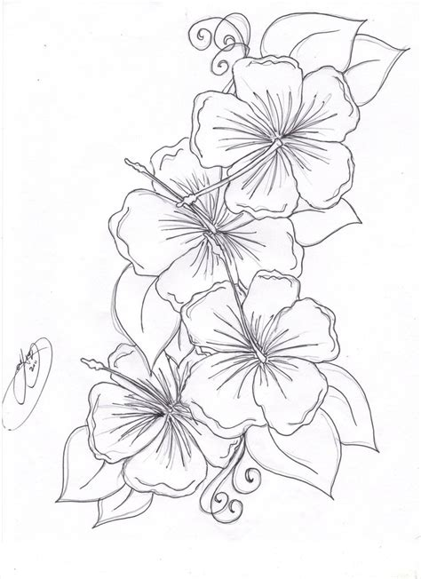 tattoo flower drawn hummingbird hibiscus tattoo drawing the hibiscus flowers