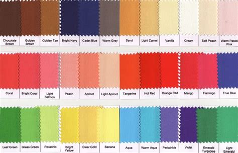 spring colors palette warm spring color palette spring color palette pinterest