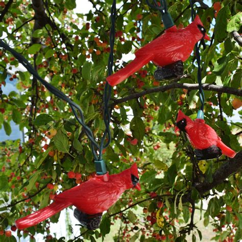 cardinal lights cardinal lights 28 images cardinal solar garden light