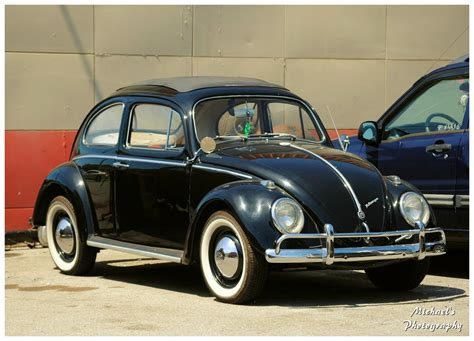 volkswagen beetle classic vintage vw beetles tubezzz photos