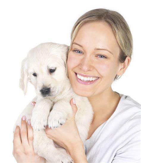 puppies n puppies n 22 photos 26 reviews pet shops 2174 e williams field rd