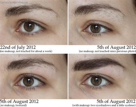 growing out eyebrows hair makeup pinterest growing