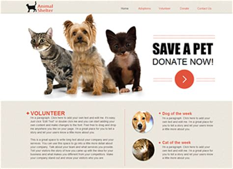 Animal Shelter Website Template Wix Rescue Website Template