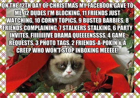 Grumpy Cat Christmas Memes - caturday blogging grumpy cat christmas card anibundel