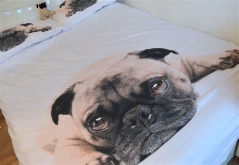 pug bed sheets 18 signs you re a crazy dog lady barkpost