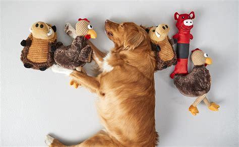 petsmart puppy toys toys kmart