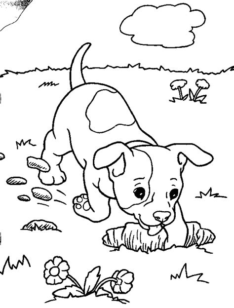 kids n fun com 12 coloring pages of puppies