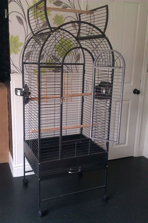 1000 ideas about cages for sale on pinterest pigeon