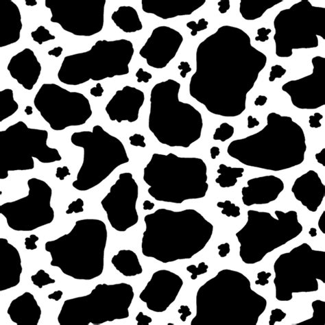 white with black spots black and white cow spots giftwrap amy g spoonflower