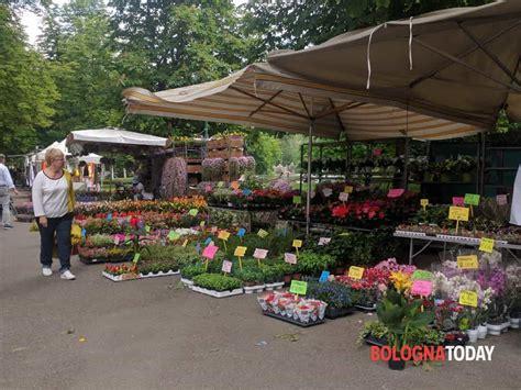 giardini a bologna giardini e terrazzi bologna