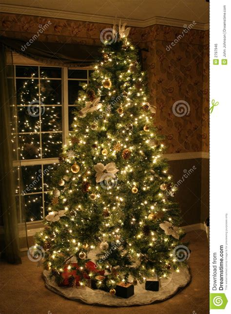 image of christmas tree christmas tree stock photo image of cozy lights green