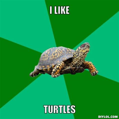 Turtle Meme - turtle memes torrenting turtle meme generator i like