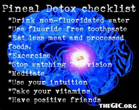 Foods That Detox The Pineal Gland by Health Tips To Decalcify Your Pineal Gland