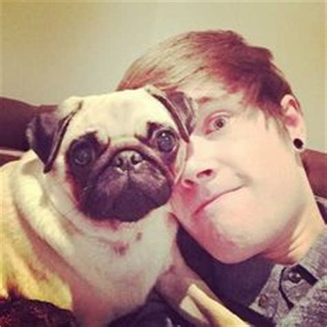 dantdm ellie the pug 1000 images about dan tdm on the pug pug and minecraft