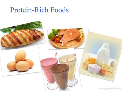 protein rich foods protein rich food high protein food protein rich food