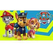 Paw Patrol Mania The Vehicles ☆ Pat Patrouille Le Marathon