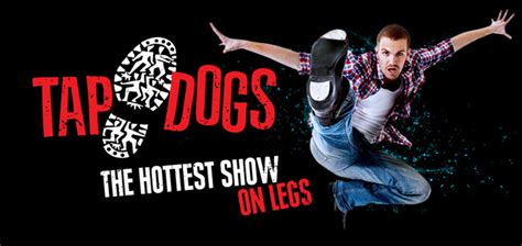 tap dogs book tap dogs crew booking agents australian entertainment consultants