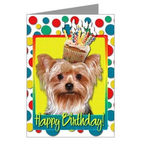how to make yorkie cupcakes birthday cupcake yorkie greeting cards pk of 10 cards animals and birthday cards