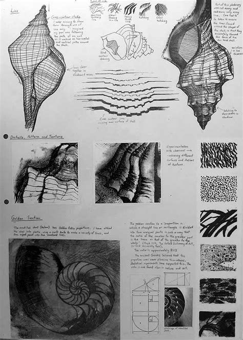 Sketches Exles by International Gcse Sketchbook Exles