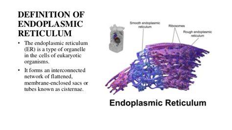 definition of borne off nucleus endoplasmic reticulum
