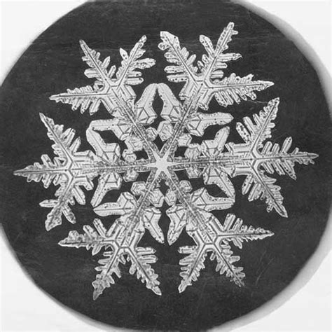 Poetry Friday Eureka Poems About Inventors Snowflake