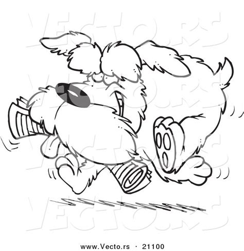 sketch schnauzer puppy coloring pages