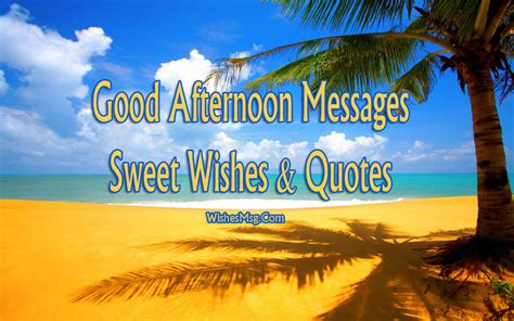 good afternoon messages wishes  quotes wishesmsg
