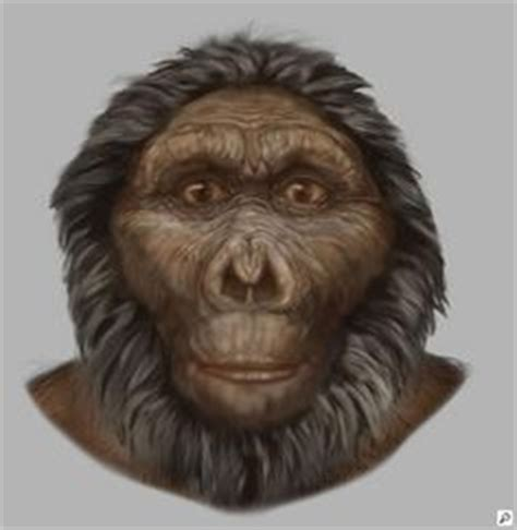 the last human a guide to twenty two species of extinct humans ebook pinterest the world s catalog of ideas