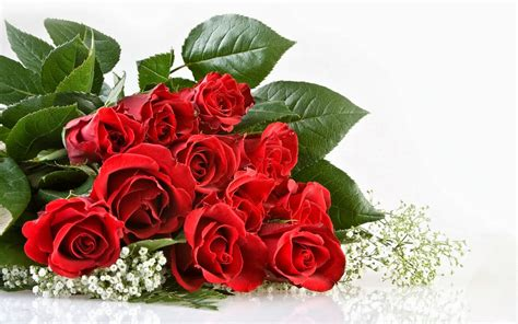Kue Ultah Bayern Munich i miss you mawar merah new calendar template site
