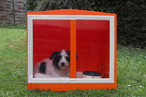 soundproof crate crates and kennels breeds picture