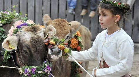 fiera dell alimentazione olma fiera dell agricoltura e dell alimentazione