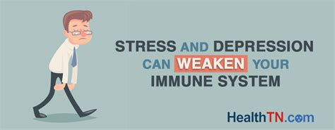 Can Detox Weaken Your Immune System by Stress And Depression Can Weaken Your Immune System Healthtn