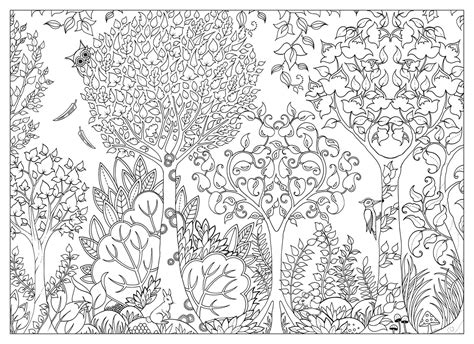 enchanted forest coloring pages pdf amazon com enchanted forest postcards 20 postcards