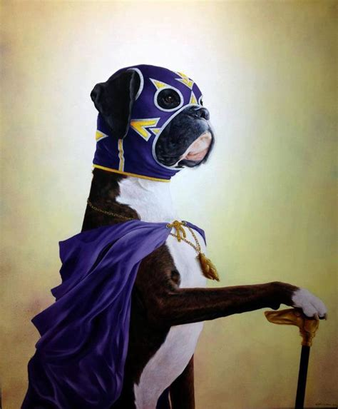 boxer costume pictures of boxer dogs pets world