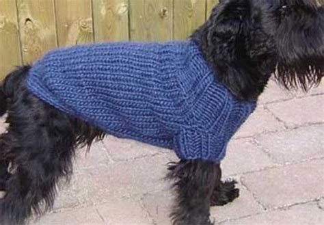 knitting pattern for coats for small dogs easy knit coat knitting pattern fits 30 50cm